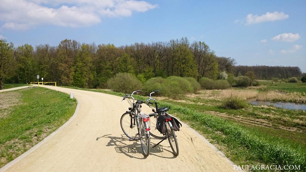 trasa_rowerowa_wroclaw_04