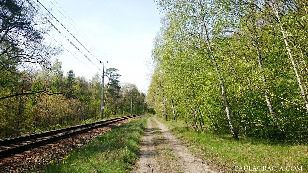 trasa_rowerowa_wroclaw_09