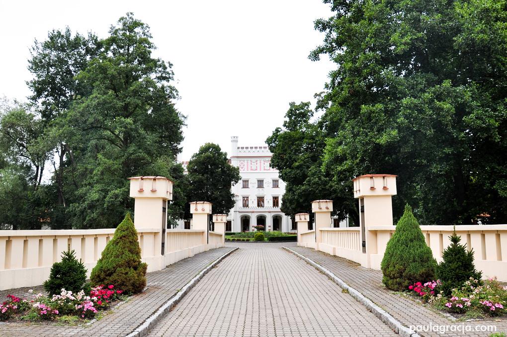 pałac_w_starej_wsi_08