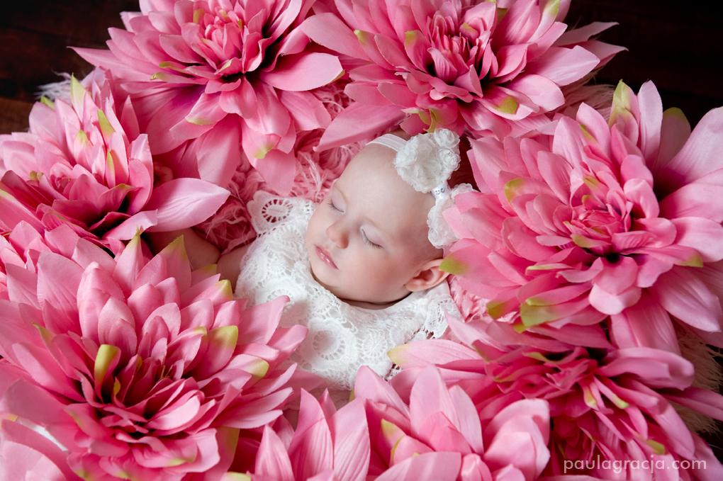 kwiatowa sesja dla niemowlaków