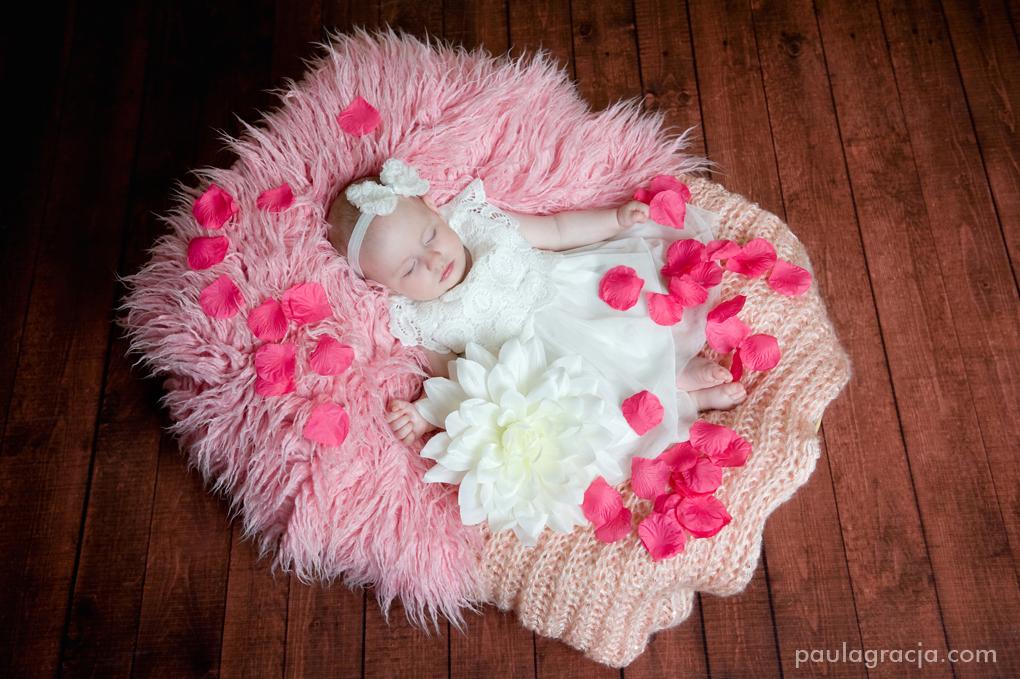 sesja niemowlęca z kwiatami
