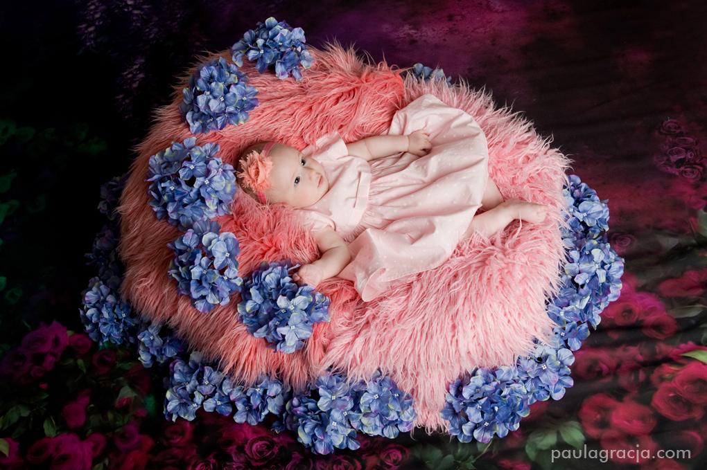 studyjna sesja dla niemowląt